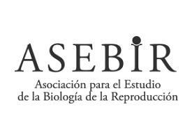 www.asebir.com